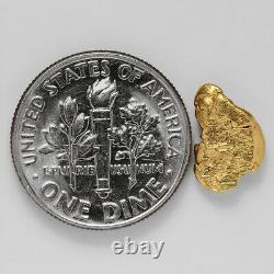 0.7937 Gram Alaska Natural Gold Nugget (#38779) FREE SHIPPING Alaskan Gold