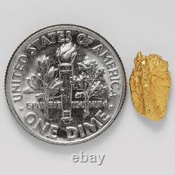 0.9016 Gram Alaska Natural Gold Nugget (#43243) FREE SHIPPING Alaskan Gold
