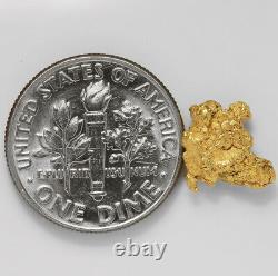 0.9167 Gram Alaska Natural Gold Nugget (#43267) FREE SHIPPING Alaskan Gold