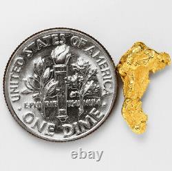 1.0425 Gram Alaska Natural Gold Nugget (#56895) FREE SHIPPING Alaskan Gold