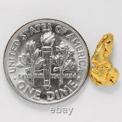 1.1653 Gram Alaska Natural Gold Nugget (#43251) FREE SHIPPING Alaskan Gold