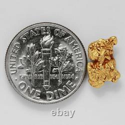 1.1847 Gram Alaska Natural Gold Nugget (#38765) FREE SHIPPING Alaskan Gold