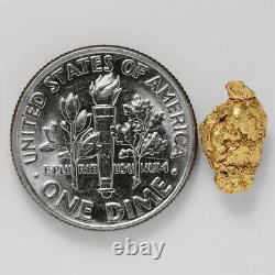 1.1898 Gram Alaska Natural Gold Nugget (#41348) FREE SHIPPING Alaskan Gold