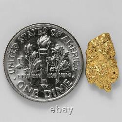 1.3135 Gram Alaska Natural Gold Nugget (#41358) FREE SHIPPING Alaskan Gold