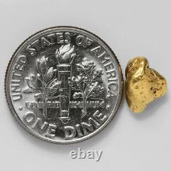 1.3490 Gram Alaska Natural Gold Nugget (#43287) FREE SHIPPING Alaskan Gold