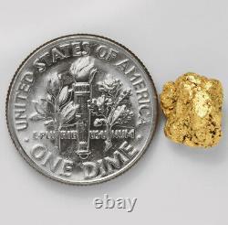 1.3655 Gram Alaska Natural Gold Nugget (#44352) FREE SHIPPING Alaskan Gold