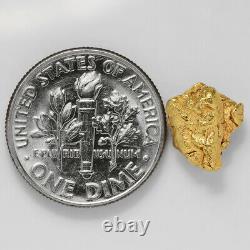 1.5434 Gram Alaska Natural Gold Nugget (#41324) FREE SHIPPING Alaskan Gold
