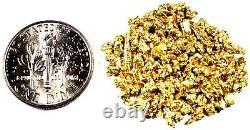 1.550 Grams Alaskan Yukon Bc Natural Pure Gold Nuggets #12 Mesh Free Shipping