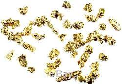 1.550 Grams Alaskan Yukon Bc Natural Pure Gold Nuggets #14 Mesh Free Shipping