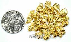 1.550 Grams Alaskan Yukon Bc Natural Pure Gold Nuggets #6 Mesh Free Shipping