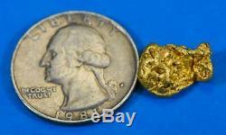 #1034 Australian Natural Gold Nugget 4.42 Grams Genuine