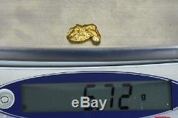 #1104 Large Natural Gold Nugget Australian 5.72 Grams Genuine