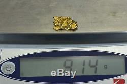 #1148 Australian Natural Gold Nugget 9.14 Grams Genuine