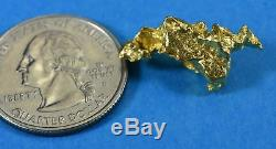 #1170 Large Natural Gold Nugget Australian 7.04 Grams Genuine