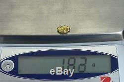 #160 Alaskan BC Natural Gold Nugget 1.82 Grams Genuine