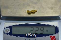 #165 Alaskan BC Natural Gold Nugget 2.29 Grams Genuine