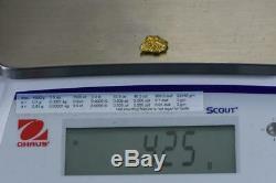 #220 Alaskan BC Natural Gold Nugget 4.25 Grams Genuine