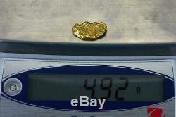 #238 Alaskan BC Natural Gold Nugget 4.92 Grams Genuine