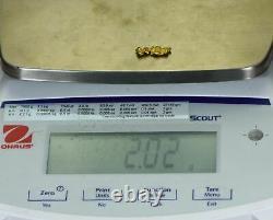 #256 Alaskan BC Natural Gold Nugget 2.02 Grams Genuine