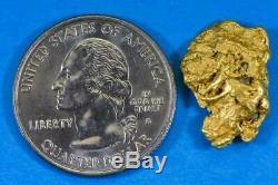 #313 Alaskan BC Natural Gold Nugget 4.31 Grams Genuine