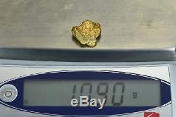 #371 Alaskan BC Natural Gold Nugget 10.90 Grams Genuine
