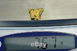 #400 Alaskan BC Natural Gold Nugget 7.67 Grams Genuine