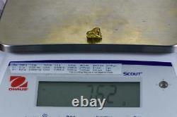 #449 Alaskan BC Natural Gold Nugget 7.62 Grams Genuine