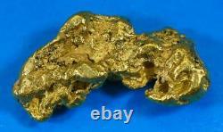 #461B Alaskan BC Natural Gold Nugget 13.10 Grams Genuine