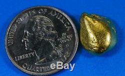 #523 Alaskan BC Natural Gold Nugget 7.93 Grams Genuine