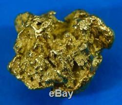 #543 Large Alaskan BC Natural Gold Nugget 20.44 Grams Genuine
