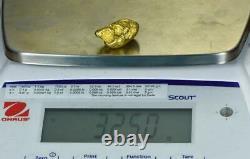 #543B Large Alaskan BC Natural Gold Nugget 32.50 Grams Genuine