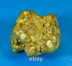 #546C Large Alaskan BC Natural Gold Nugget 38.65 Grams Genuine-C