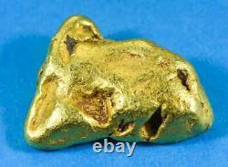 #553 Large Alaskan BC Natural Gold Nugget 49.81 Grams Genuine