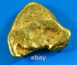 #554C Large Alaskan BC Natural Gold Nugget 44.92 Grams Genuine