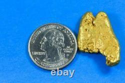#555 Large Alaskan BC Natural Gold Nugget 23.43 Grams Genuine