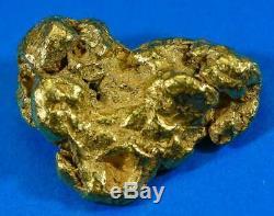 #557 Large Alaskan BC Natural Gold Nugget 27.81 Grams Genuine