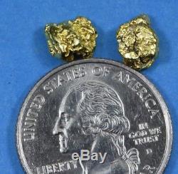 #646 Alaskan-Yukon BC Natural Gold Nugget Earrings 2.51 Grams