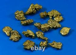Alaskan BC Natural Gold Nugget 5 Troy Oz. Lot of 5-10 gram Nuggets Genuine B& C