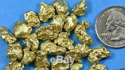 Alaskan BC Natural Gold Nugget 50 Gram lot of 2 to 5 gram Nuggets Genuine