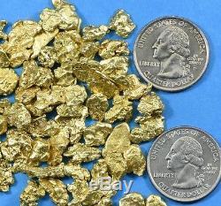 Alaskan BC Natural Gold Nugget 50 Gram lot of. 70 to 2 gram Nuggets Genuine