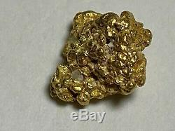 Alaskan Natural Placer Gold Nugget 1.195 grams Free Shipping! #A116