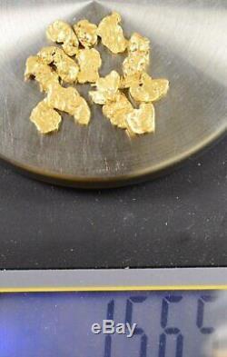 Alaskan-Yukon BC Natural Gold Nugget #4 Mesh 1/2 Troy Ounce 15.55 Gram 10 DWT