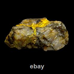 Australian Gold Ore Covered in Thick Natural Gold 208 GRAM / 7.36oz VERY RARE