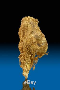 BEAUTIFUL DENDRITIC NATURAL CRYSTALIZED GOLD NUGGET SPECIMEN Round Mountain