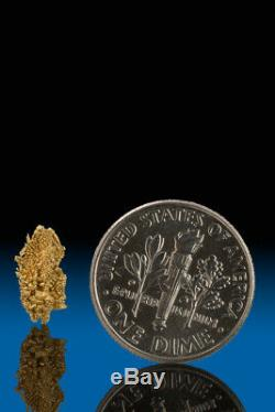 BRILLIANT TRIGONS NATURAL CRYSTALIZED GOLD NUGGET SPECIMEN Round Mountain