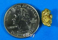 CA-13 California Gold Nuggets 3.12 Grams Gold Authentic Natural American River