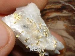 California Gold Quartz Specimen Natural Gold Nugget 13.9 Gram Gold In Quartz