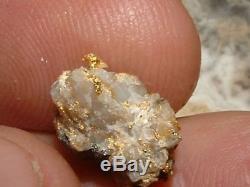 California Gold Quartz Specimen Natural Gold Nugget 2.6 Gram Gold In Quartz