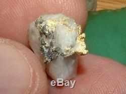 California Gold Quartz Specimen Natural Gold Nugget 2.6 Grams Gold In Quartz