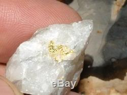 Crystalline Gold Quartz Specimen Natural Gold Nugget 12.4 Gram Gold In Quartz